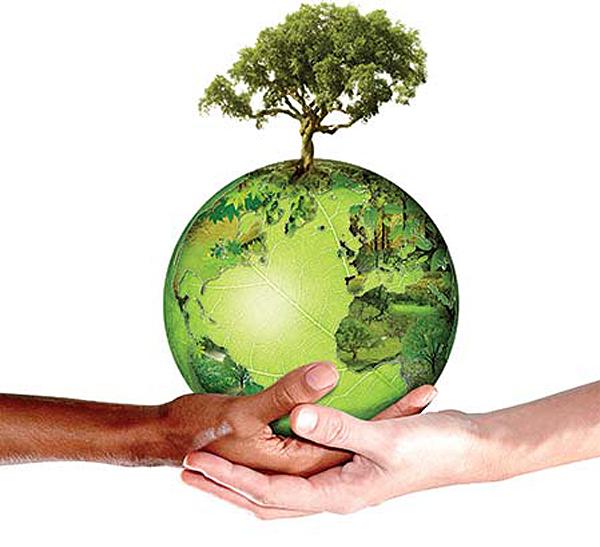 terra_cuidado_sustentabilidade
