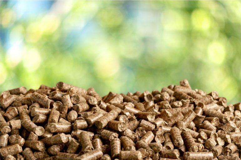 Vantagens e desvantagens da Energia de Biomassa